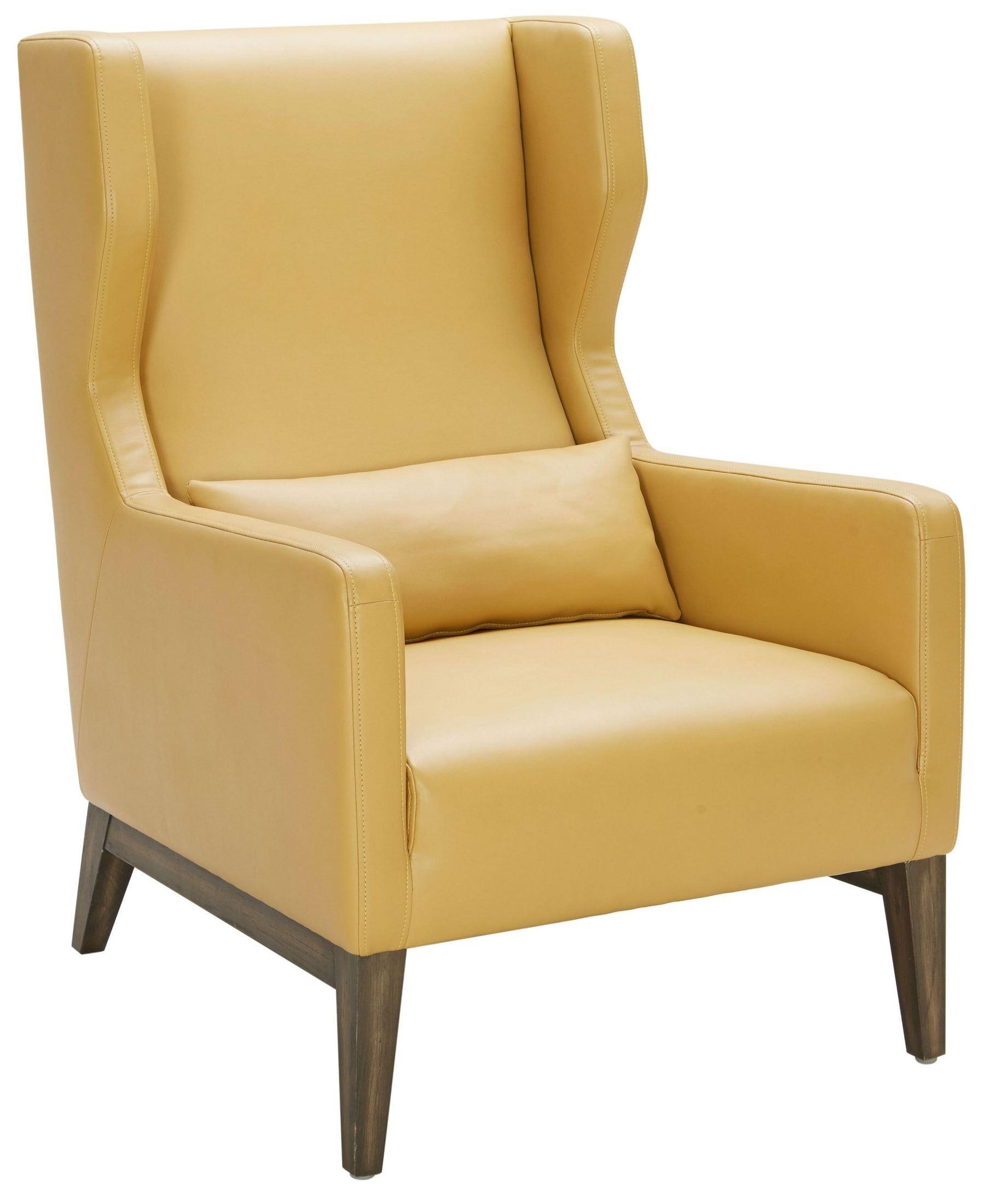 Messina Mustard Leather Armchair From Sunpan Coleman