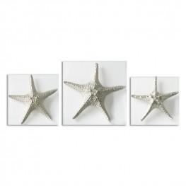 Silver Starfish Wall Art Set of 3
