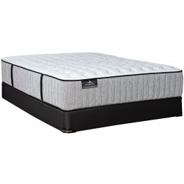 Passions Aspiration Firm Full Extra Long Mattress With Standard Foundation