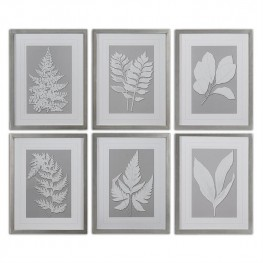 Moonlight Ferns Framed Art Set of 6