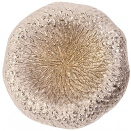 Champagne Small Aluminum Tray and Wall Decor
