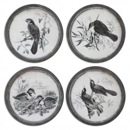 Birds In Nature Framed Art Set of 4