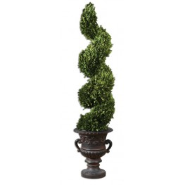 Spiral Topiary Preserved Boxwood