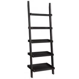 800338 Ladder Bookcase