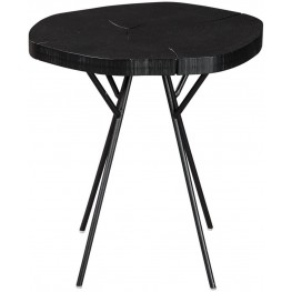 Rich Black Accent Table By Scott Living