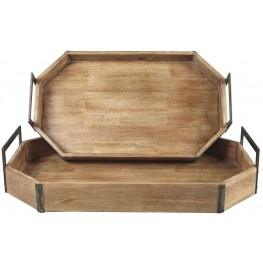 Octavios Brown and Gold Tray Set of 2