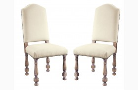 Accentrics Home Amethea Dione Side Chair Set of 2