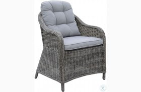 Canistota Gray Outdoor Arm Chair Set of 2