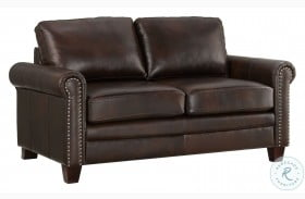 DS-A928-681 Brown Stationary Leather Loveseat