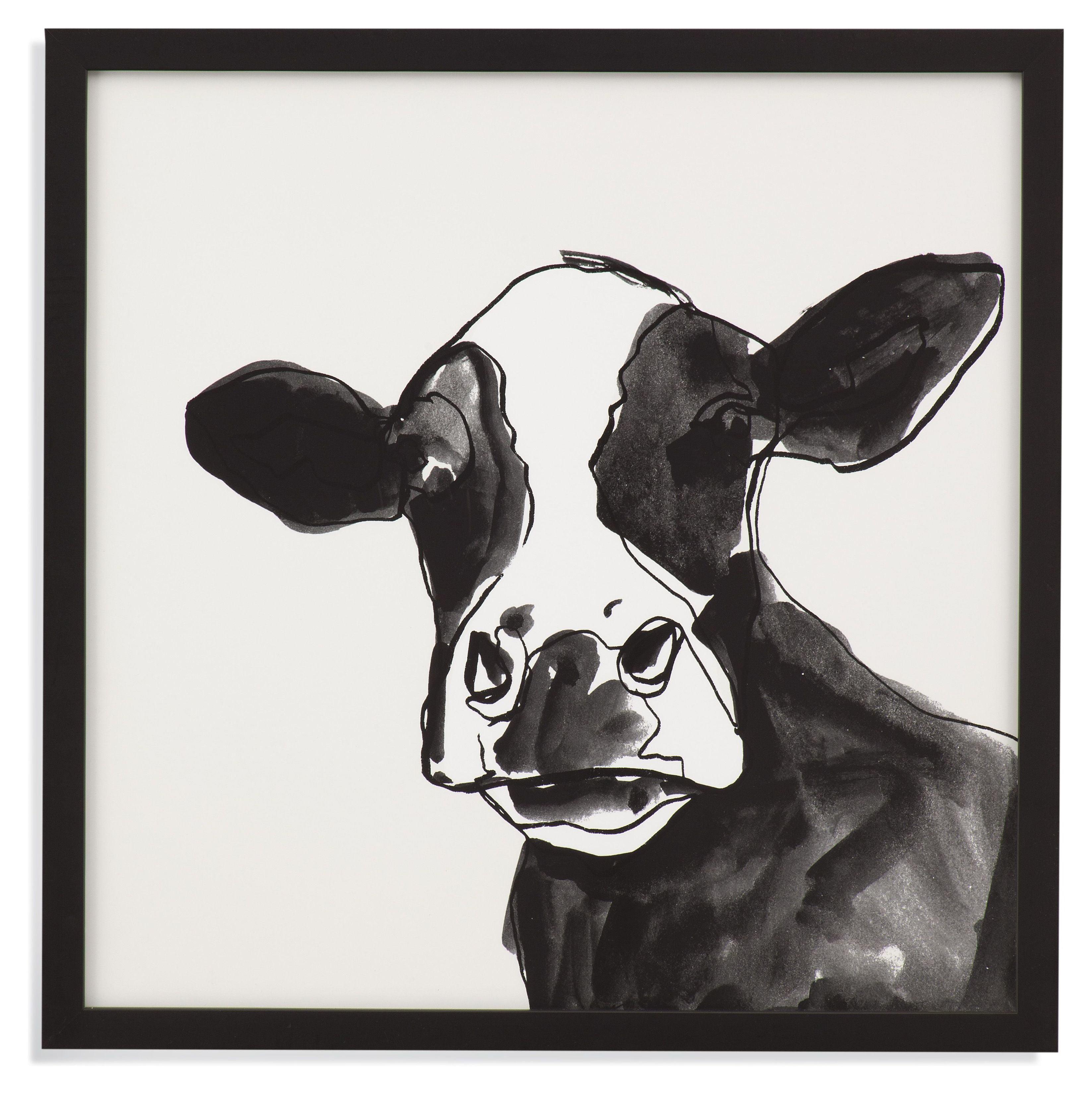 Cow Contour